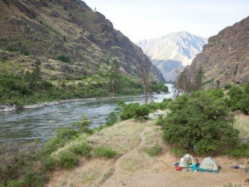 ELEMENTS: A Flowery Reception in Hells Canyon