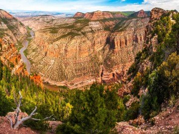 Insider's Guide to the Best Whitewater Rafting in Utah   Green River through the Gates of Lodore