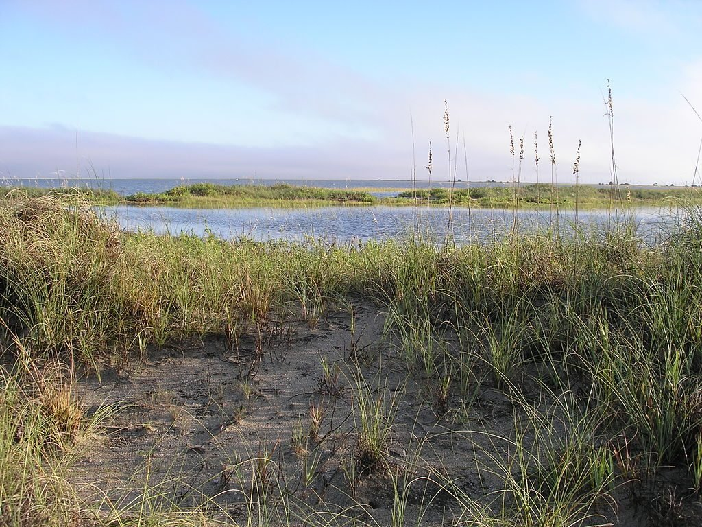 7 Cool Places to See the 2017 Total Solar Eclipse in the Wild   Cape Romain National WIldlife Refuge
