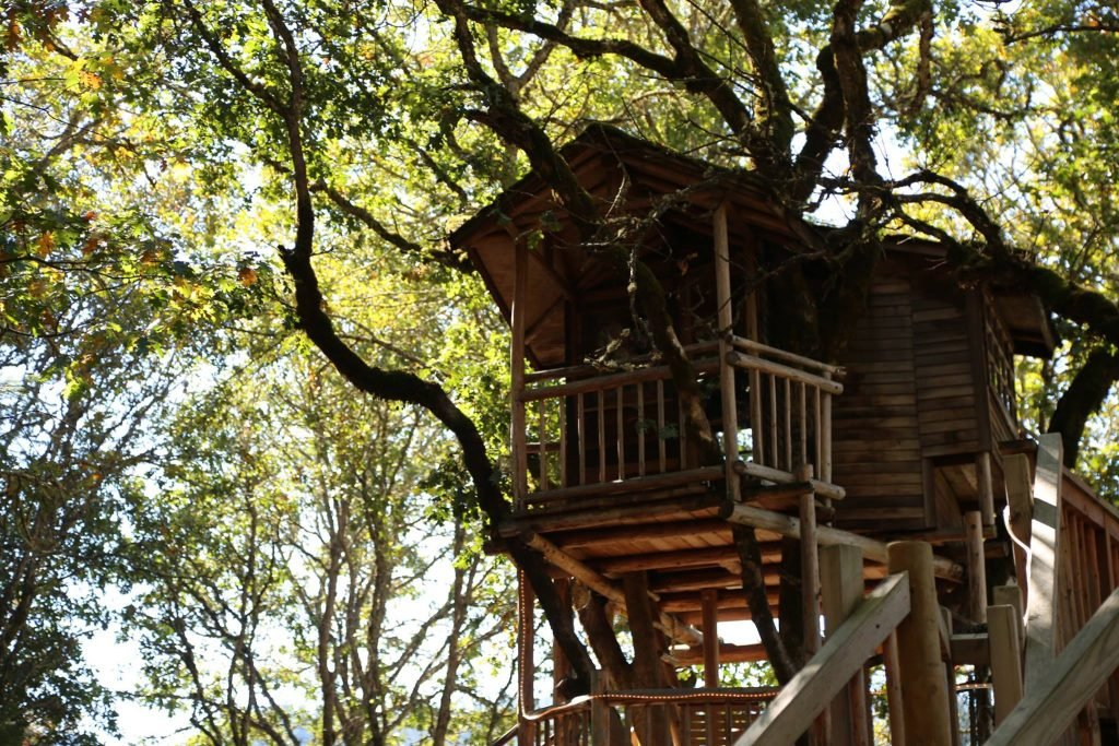 25 Unplugged Family Vacation Ideas | Out' N' About Treehouse Resort