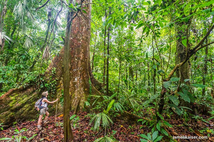 Top Adventures in Costa Rica - Corcovado National Park