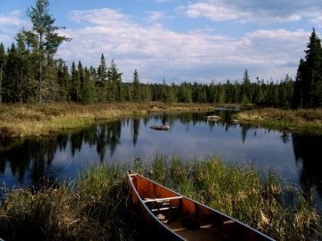 The Best National Forests for Paddling