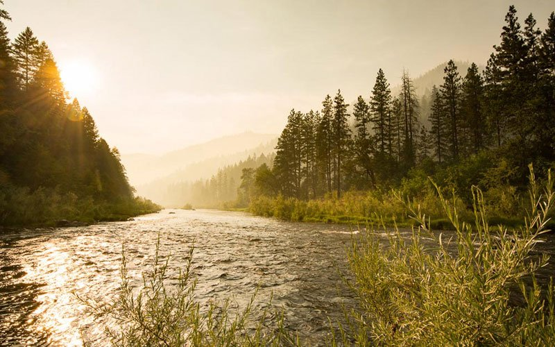 The Best National Forests for Paddlers