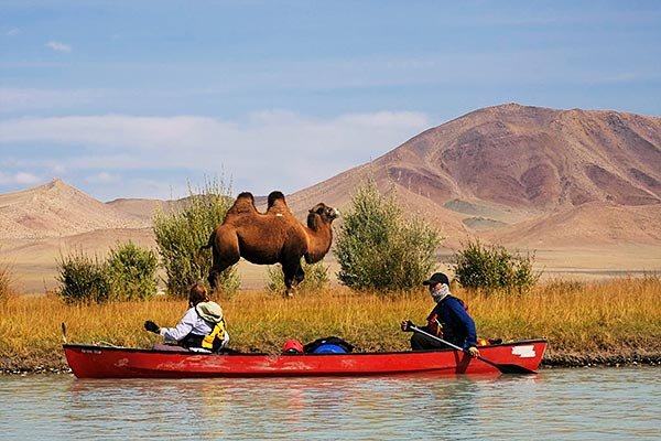 Canoeing past a camel on the Khovd River
