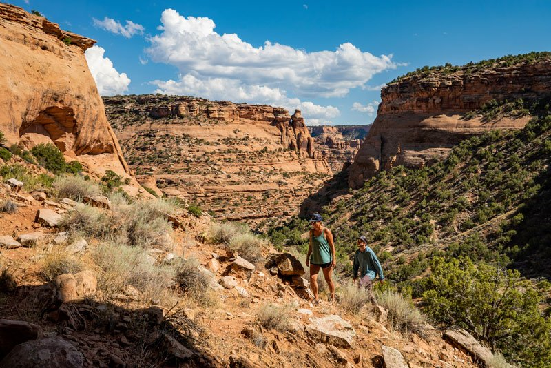 Quick guide to the different types of public lands